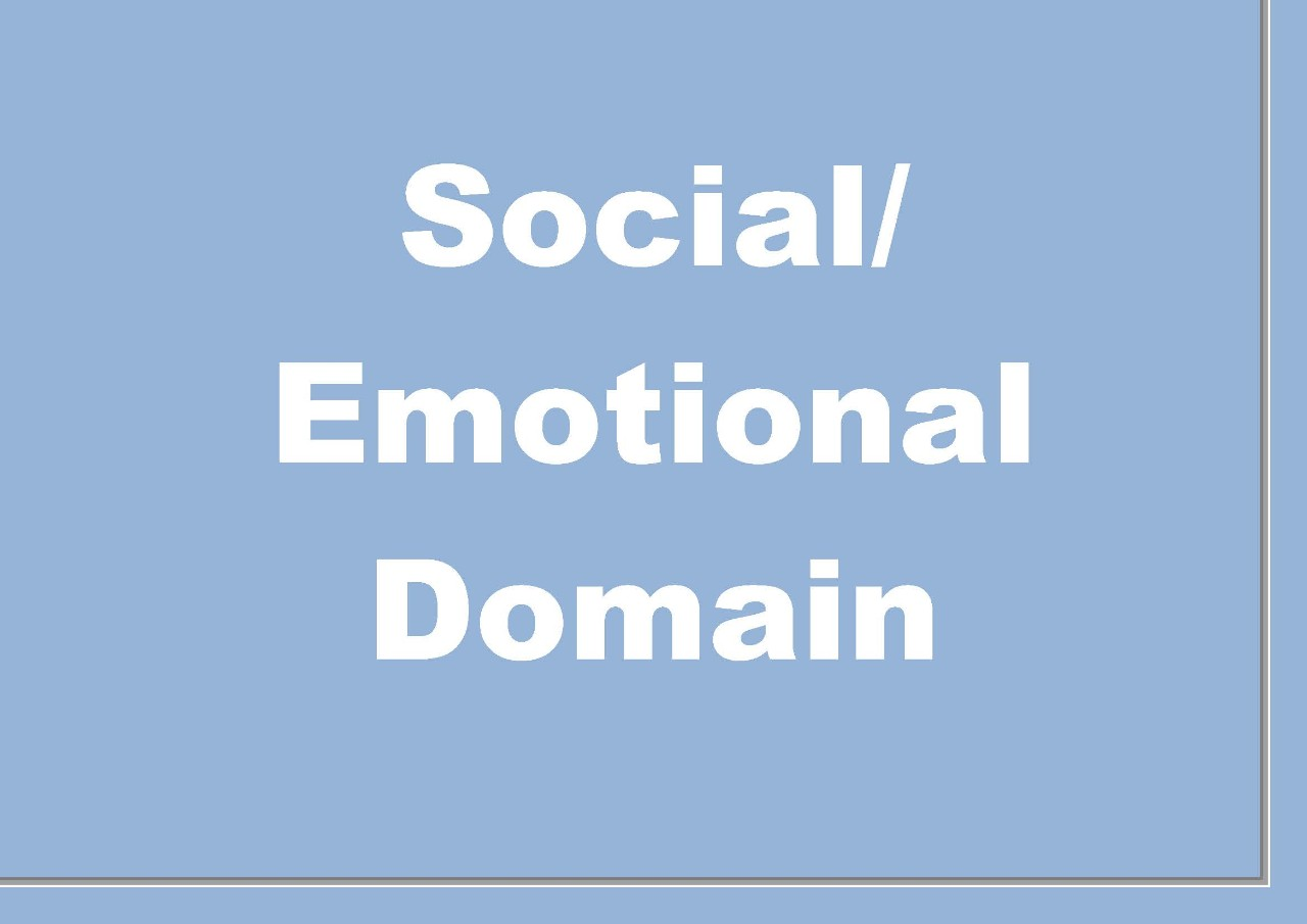 Social and Emotional Domain
